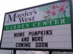 Meader's West Garden Center - Troy
